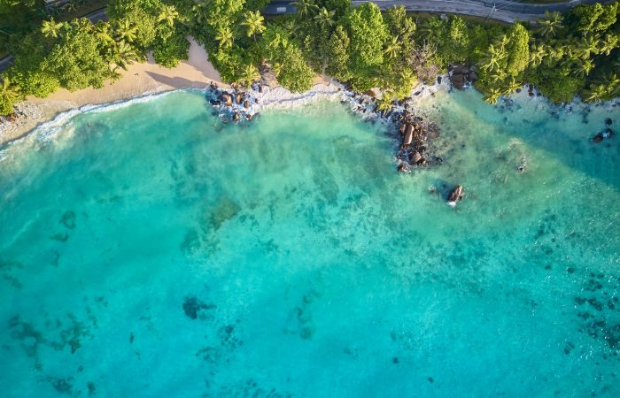 Beautiful beach with palm tree and rocks aerial top view drone shot at Seychelles, Mahe
